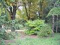 Botanička bašta Jevremovac 006.JPG