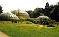 Botanischer Garten der Universität Zürich.jpg