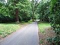 Bowesden Lane, Shorne - geograph.org.uk - 1399167.jpg