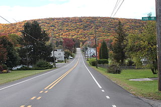 Brandonville, Pennsylvania CDP in Pennsylvania, United States