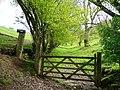 Bridleway to Sugarloaf (Y Fal) 2 - geograph.org.uk - 1298396.jpg
