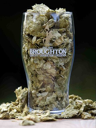 Broughton Ales - Broughton glass full of Amarillo Hops.  Situated in the heart of the Scottish Borders