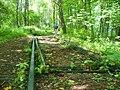 Buchenwald - Bahnreste (Railway Track Remnants) - geo.hlipp.de - 40204.jpg