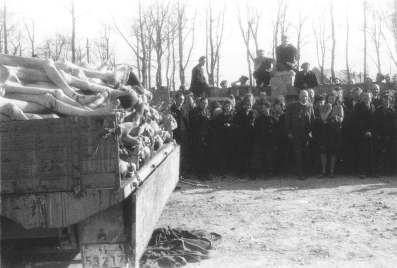 filebuchenwald corpses 60642jpg wikimedia commons