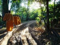 Buddhist monks in Phetchabun.jpg