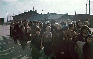 Jews in the Minsk Ghetto, 1941