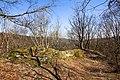Burgruine-Hattstein-JR-E-3729-2020-04-02.jpg