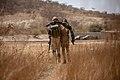 Burkinabe soldiers conduct presence patrols during Flintlock 20 (50110308658).jpg
