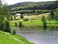Bussang-les-Sources etang Moselle 20070707 FRA Vosges Misson Didier.JPG