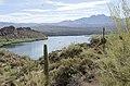 Butcher Jones Trail to Pinter's Point Loop, Tonto National Park, Saguaro Lake, Ft. McDowell, AZ - panoramio (70).jpg