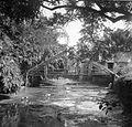 COLLECTIE TROPENMUSEUM Een brug van bamboe te Bandoeng West-Java TMnr 10007466.jpg