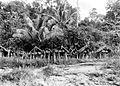 COLLECTIE TROPENMUSEUM Kerkhof te Siberoet Mentawai-eilanden TMnr 10003245.jpg