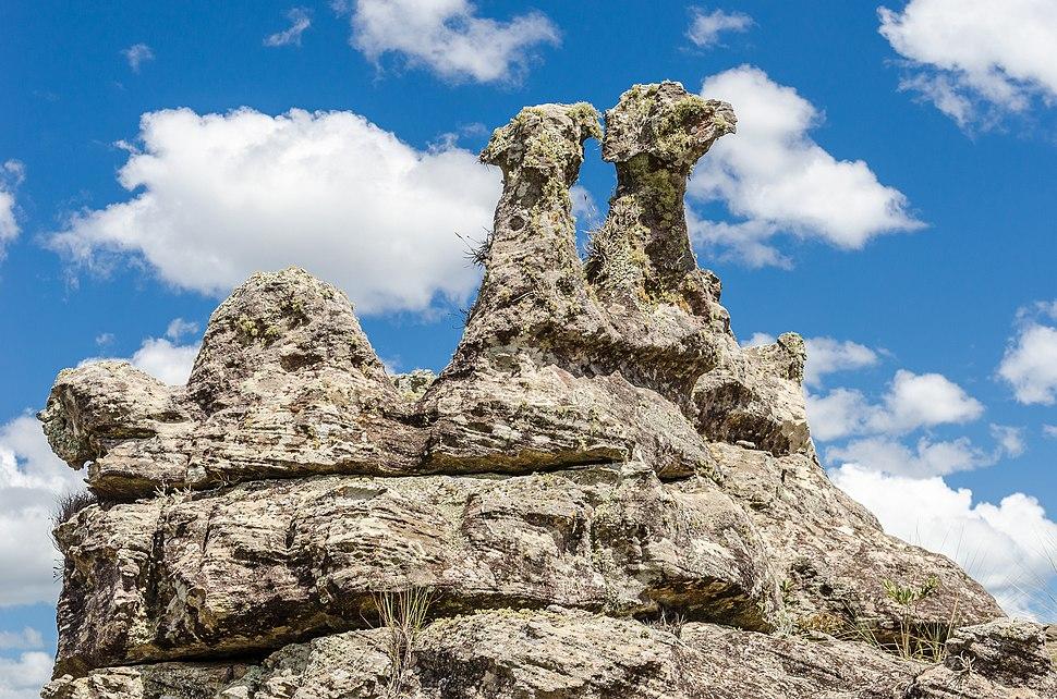 Cabeças de águia do Parque Estadual do Guartelá
