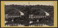 Cabinet Bridge, across the Lake to the Mall, by T. C. Roche.png