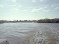Caladesi Island marina01.jpg