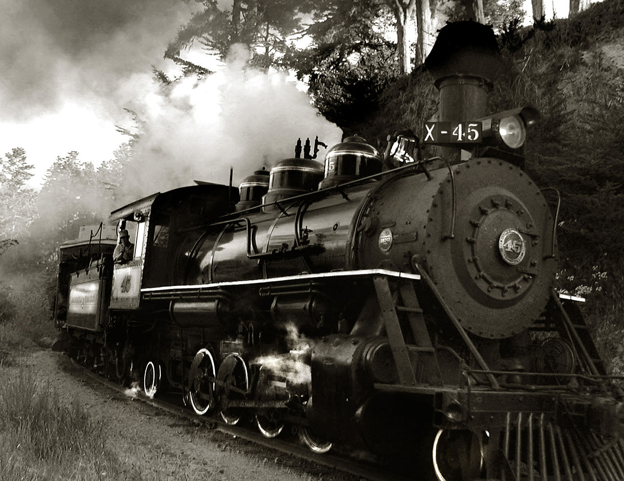 Locomotive #45 de la California Western Railroad