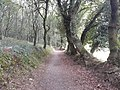 Camino Primitivo, Ferreiral, Bacurín 01.jpg