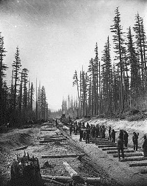 Canadian Pacific Railway - Canadian Pacific Railway Crew laying tracks at lower Fraser Valley, 1881