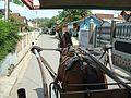 Cangkuang Lake Java78.jpg