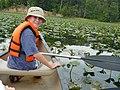 Canoe Tour, Belmont Bay (5998919017) (2).jpg