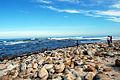 Cape Town 2012 05 16 0017 (7365150278).jpg
