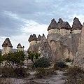 Cappadocia, Zelve Pasabagi Valley - panoramio (7).jpg