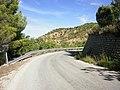 Carretera municipal hacia La Terrera - panoramio.jpg