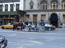Carriage at daylight in the traffic of Manhattan, New York, USA. (Photo: June 14, 2007)