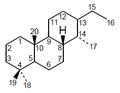 Cassano - Numeración.png
