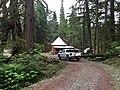 Cedar cabin in the Great Bear Rainforest.jpg