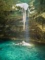 Cenote in valladolid mexico (21200693590).jpg