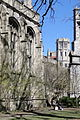 Central Campus Scene - University of Chicago - Illinois - USA - 02.jpg