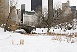 Central Park New York January 2016 005.jpg