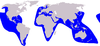 Cetacea range map False Killer Whale.PNG