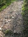 Chemin des Virès.jpg