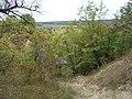 Cherkas'kyi district, Cherkas'ka oblast, Ukraine - panoramio (1081).jpg