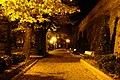Chieti di notte - panoramio.jpg