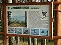 Chojnice, Poland - panoramio (38).jpg