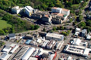 Christchurch Hospital - Christchurch Hospital buildings viewed from the southeast
