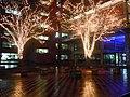 Christmas illumination in Hirosaki - panoramio.jpg