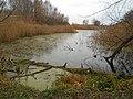 Chyhyryns'kyi district, Cherkas'ka oblast, Ukraine - panoramio (29).jpg