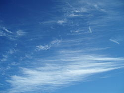 Image illustrative de l'article Cirrus fibratus