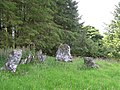 Cloghmore Chambered Grave - geograph.org.uk - 202322.jpg