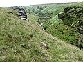 Clough towards Ogden Reservoir - geograph.org.uk - 1375754.jpg