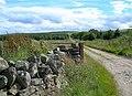 Cluny Farm Track - geograph.org.uk - 519151.jpg