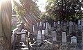 Cmentarz Żydowski zdjęcie nr I.jpg
