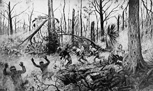 United States campaigns in World War I - US Marines in Belleau Wood, 1918