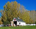 Colonial Barn, Riley's Farm, Oak Glen, CA 11-15 (24399747165).jpg