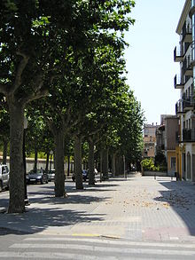 Common street in Mataró.jpg
