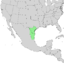 Condalia hookeri range map 2.png